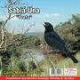 Cd Canto De Pássaros Sabiá Una Preta Canto Mateiro Do Sul