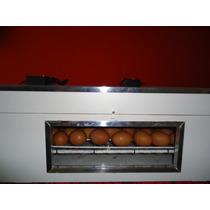 Chocadeira Automática De 100 Ovos Ventilada A Ar