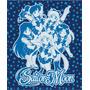 Blanket Sailor Moon Grupo Ge89060