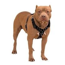 Coleira Peitoral Couro Com Spikes P/ Pitbull E Outras Raças