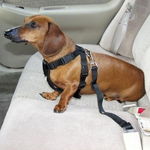 Adaptador Cinto Segurança Veículo Cães Gatos Disponivel Novo