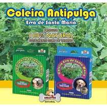 Coleira Anti Pulgas E Carrapatos - Natural - Porte Medio