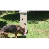 Tratador Comedouro Cães Pequeno Médio Grande Porte Automátic