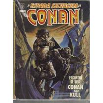 A Espada Selvagem De Conan Numero 47 - Editora Abril