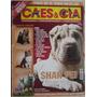 Revista Cães & Cia - Shar Pei - Nº 345.