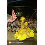 Fantasias De Carnaval Para Escolas De Samba