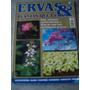 Revista Ervas & Plantas Que Curam - Nº 4