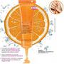 Creme Gel Hidratante Com Vitamina C Para Cutículas Avon
