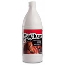 Shampoo Para Cavalos Com Silicone 3 Em 1 Mag Horse 1l