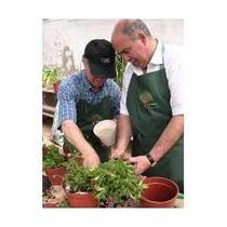 Jardinagem E Paisagismo - Ebook Completo