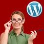Site De Classificados Profissional [ Plataforma Wordpress ]