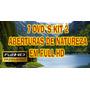 Kit 2 Aberturas De Vídeos Natureza Em Full Hd