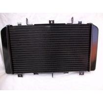 Radiador Cb600 Hornet 2008/2014original Honda 19010-mfg-d01