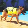 Colete Salva Vidas Para Cachorro Tamanho G Ativa Pet Vest