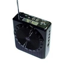 Kit Professor Com 2 Microfones Amplificador De Voz Radio Fm