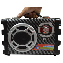 Caixa De Som Usb Mp3 Sd Fm Stereo Recarregável Karaoke