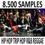 8.500+ Samples Hip Hop Trip Hop R&b Reggae Pack33