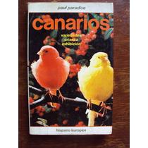 Livro Canarios De Paul Paradise