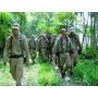 Sobrevivencia Na Selva - Ebook Completo