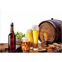 Curso De Cervejeiro Artesanal