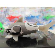 Peixe Robô Tubarão - Robot Fish - Shark