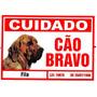 Placa Advertência Fila Cuidado Cão Bravo - Frete Grátis!