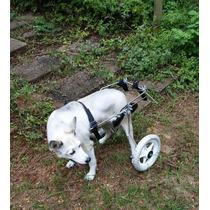 Cadeira De Rodas Cães De Médio Porte