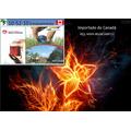 Plant Prod 10-52-10 Enraizamento Adubo Fertilizante 1 Kg
