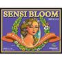 Fertilizante Sensi Bloom Parte A+ B Fracionado 100ml