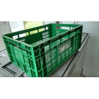 Caixa Plástica Vazada Mercoplasa Ms24