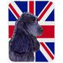 Cocker Spaniel Inglês Com Union Jack Bandeira Britânica De