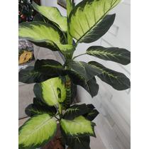 Planta Artificial-arranjo-arvore Comigo Ning Pode 1,50m Alt.