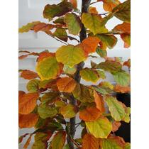Planta Artificia/arranjo/arvore Croton 1,60mt Altura
