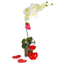 Orquídea Branca Divina - Decoração E Presente Dia Das Mães