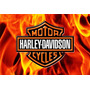 Placas Decorativas Harley Davidson Logotipo Fire Flame