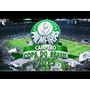 Palmeiras Dvd Campeão Copa Do Brasil 2015 Jogo Completo + Ex