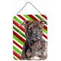 Staffordshire Bull Terrier Staffie Candy Recados Natal Do Ba