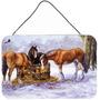 Cavalos Comendo Feno Na Parede De Neve Ou A Suspensão Da Po