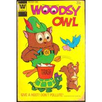 Hq Woodsy Owl 1973 - Veja Nossos Gibis Antigos E Importados