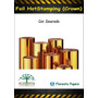 5 Metros Foil Para Minc Hotstamping Dourado
