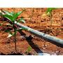 Irrigação Por Gotejamento Em Dvd - Frete Grátis!!!