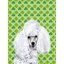 Dia Da Bandeira Canvas Casa Tamanho De White Toy Poodle Afor