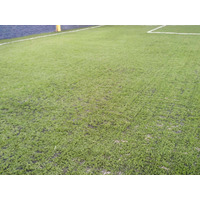 Grama Sintética Esportiva Sportgrass Duo - Campo De Futebol