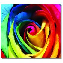 Quadro Rosa Colorida, Tamanho Grande, Frete Grátis.