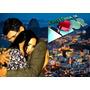 Dvd Novela Historia De Amor - Completa + (frete Gratis)