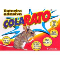 Ratoeira Adevisa Cola Rato = Caixa Com 20 Ratoeiras F Grátis