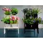 Arranjo Artificial Escada Com Flores E Pimenta