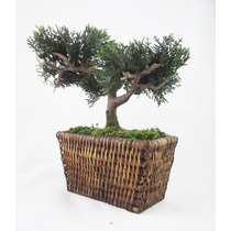 Arranjo Bonsai - Rattan Mini Árvores Artificial Plantas Flor