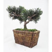 Arranjo Bonsai - Rattan Mini Árvores Artificial Plantas Flor