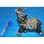 Elefante De Resina Indiano, Sorte E Sabedoria